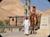 Поездка на Мёртвое море Цена
