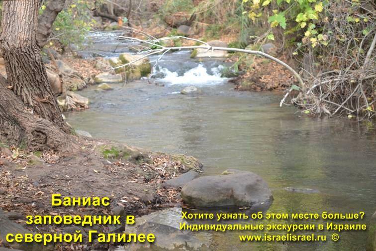 водопад Баниас фото с Гидом