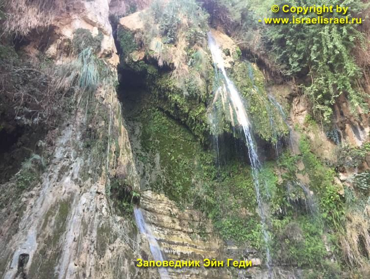 Rules of Conduct in Ein Gedi