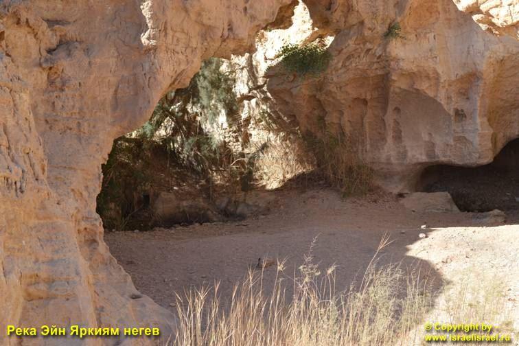 Пустыня негев Река
