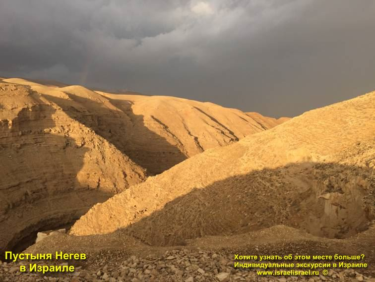 Отдых в пустыне Негев