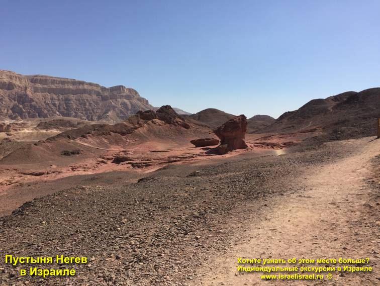 Чем заняться в пустыне Негев