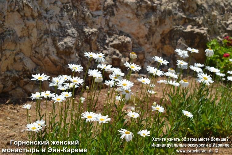 Эйн-Карем благое место Иерусалима