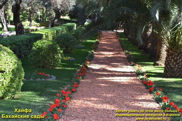 Бахайские сады на горе Кармель