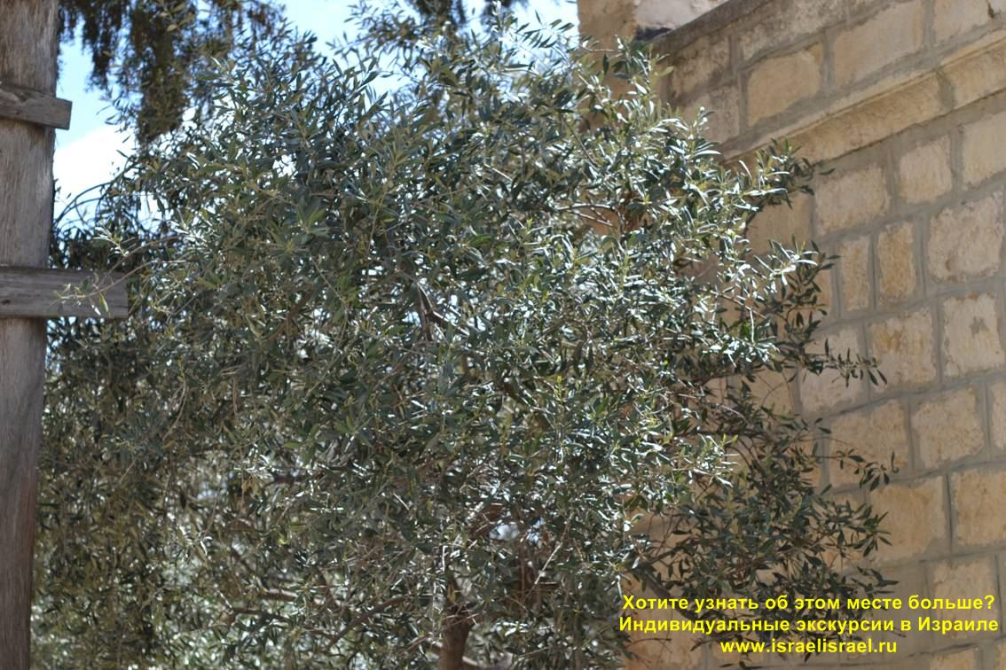 Monastery of the Armenian Jerusalem