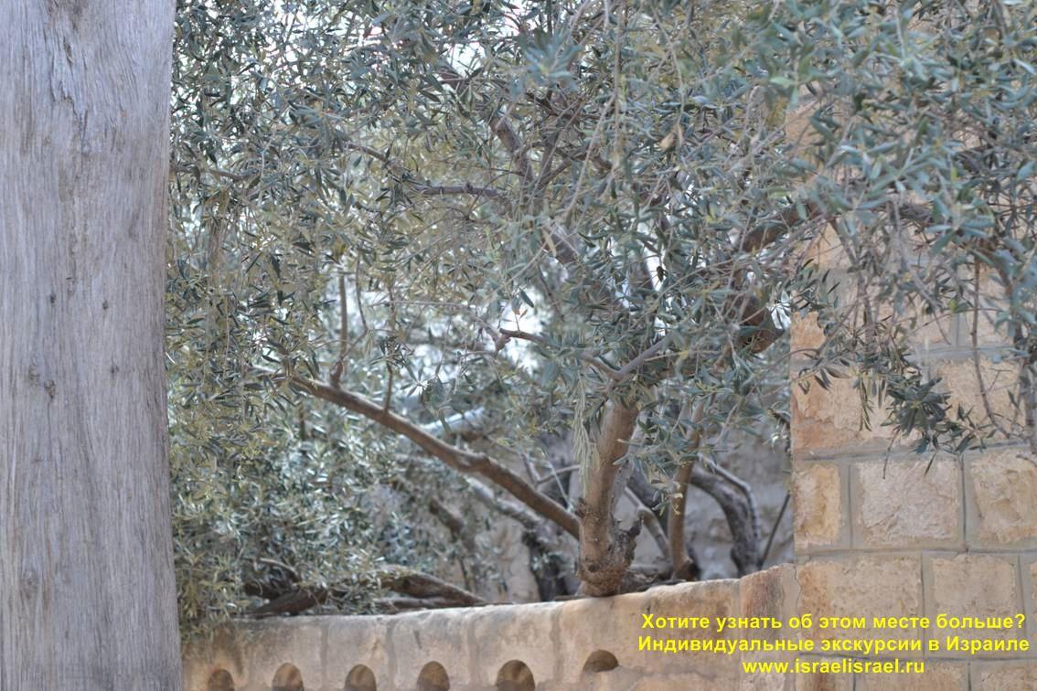 Armenians in Jerusalem
