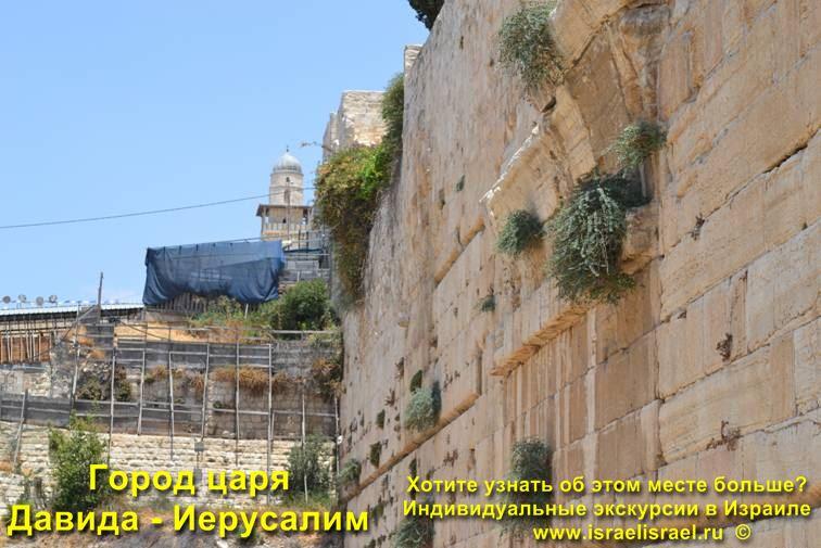 молитва помяни царя давида и всю кротость