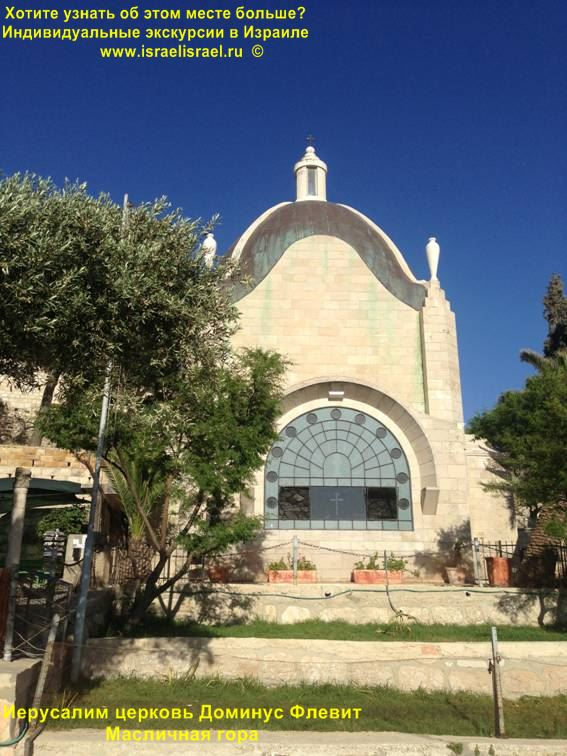 экскурсии в Израиле на русском языке, гид в Тель Авиве,