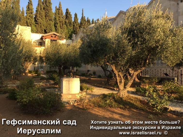 гефсиманский сад находится