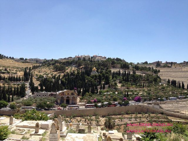 шхемские ворота иерусалима