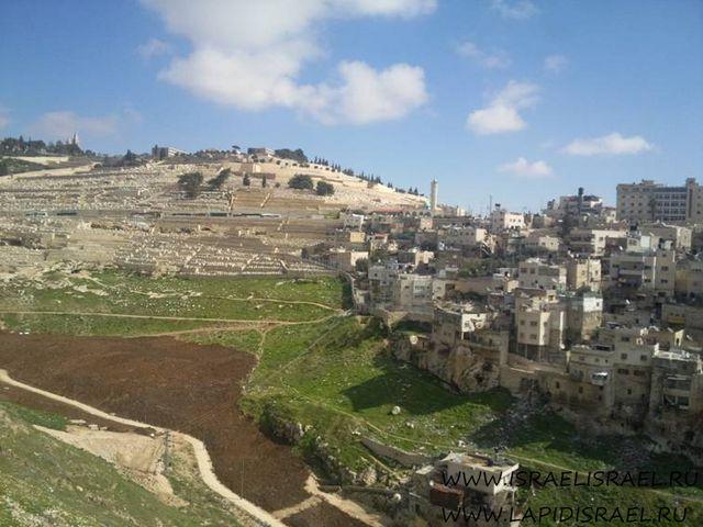 туроператоры в израиле