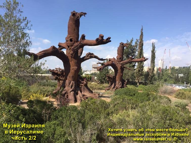 музей старости в израиле