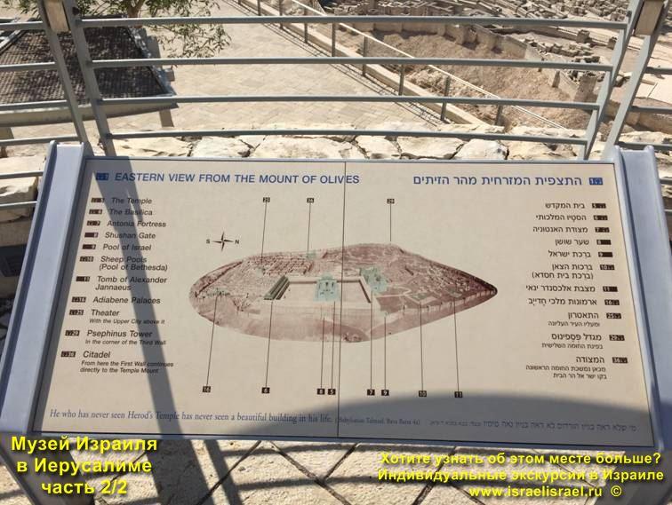 музеи израиля самые популярные