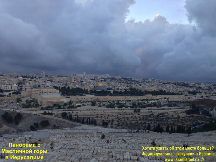 olive mountain photo