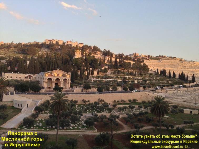 масличная гора фото