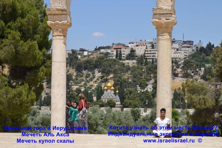 юнеско израиль храмовая гора