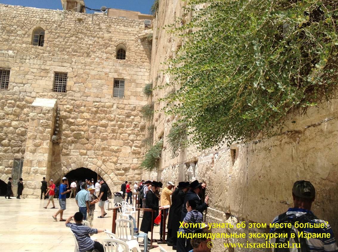 Западная стена Иерусалим