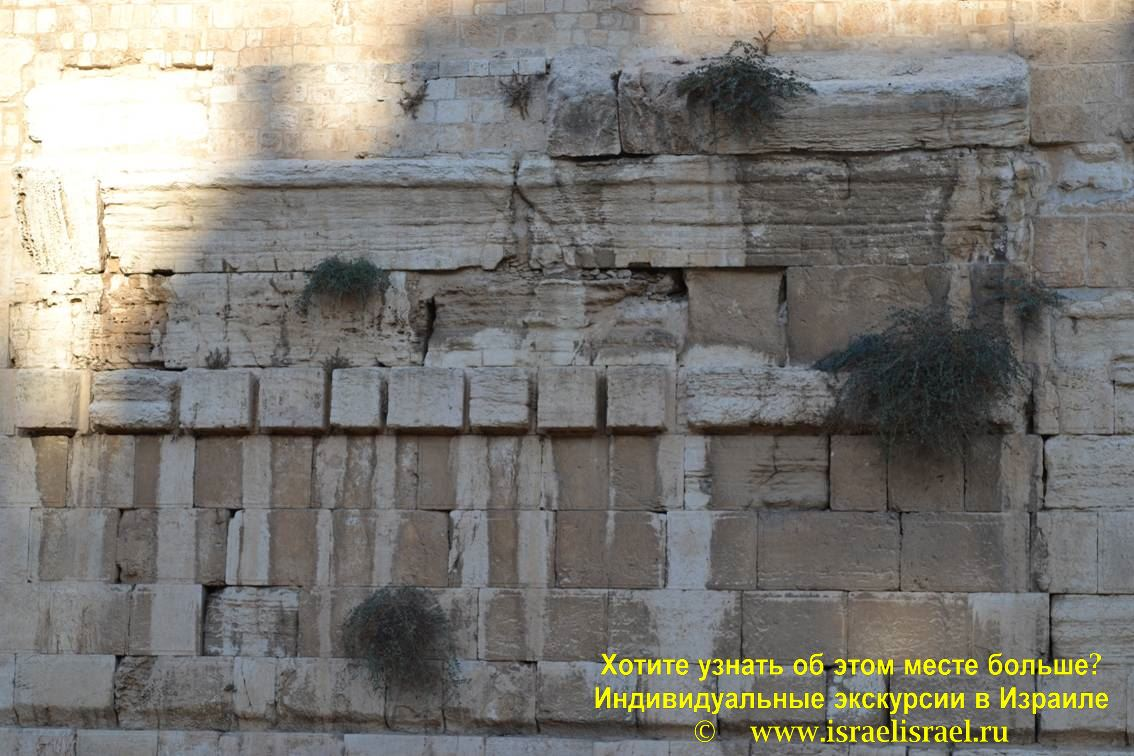 стена плача в иерусалме как правильно