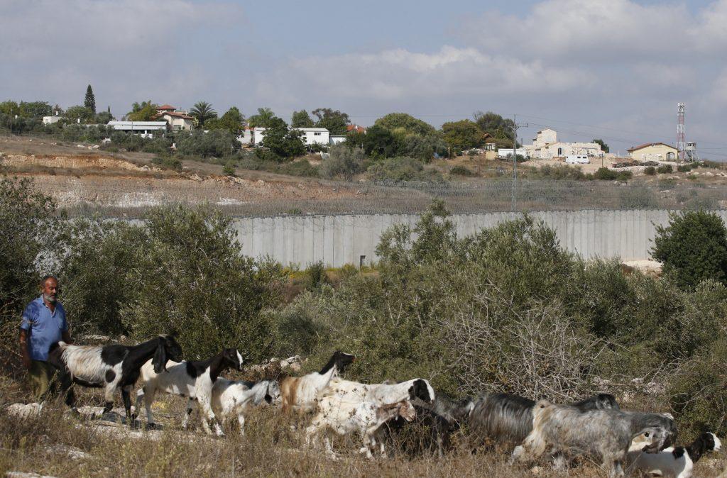 Где живут бедуины в Израиле