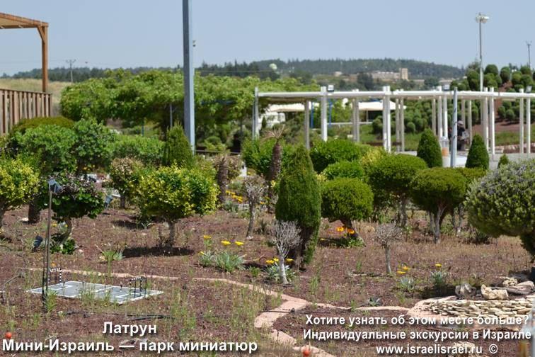 Иерусалим Мини Израиль экскурсия