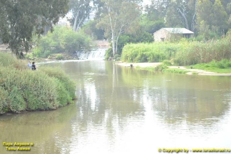 река в парк яркон