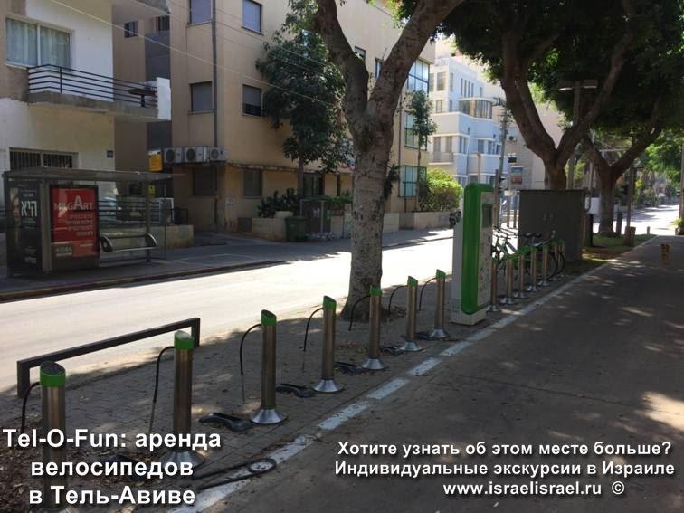 Сколько стоит аренда велосипедов в Израиле