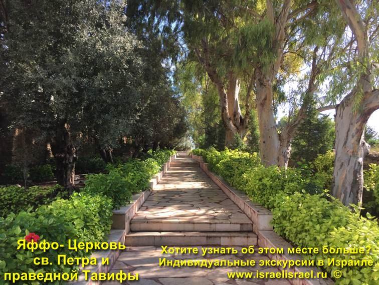 Экскурсии из Тель Авива в Иерусалим
