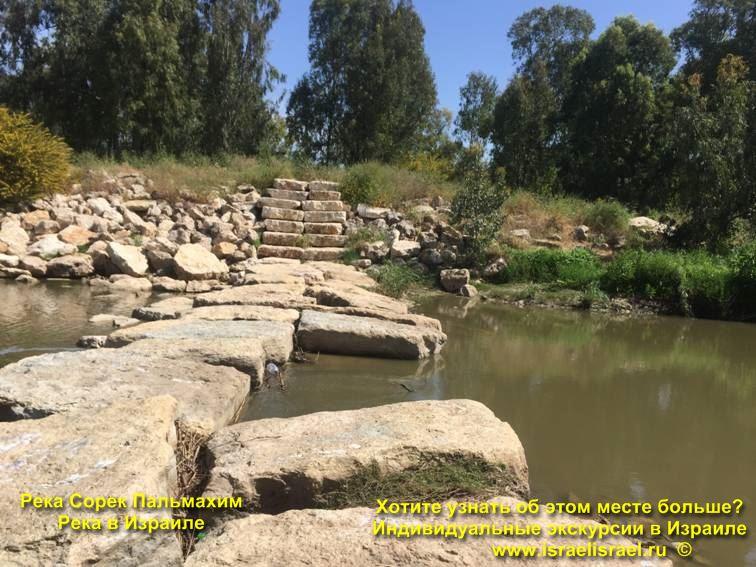История Нахаль Сорек в Израиле - Реки Израиля