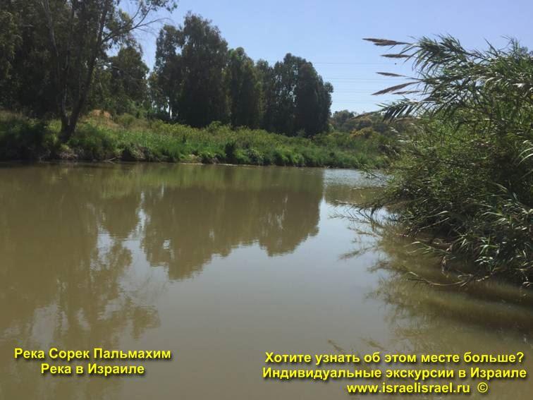 Нахаль Сорек Река Сорек Пальмахим