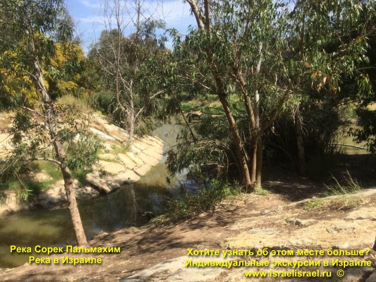 Пещеры реки сорек Иерусалим