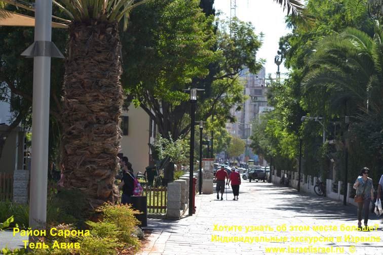 израиль тель-авив сарона-маркет индивидуальные экскурсии Тель-Авиве