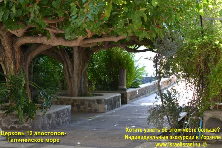 церковь 12 апостолов в израиле