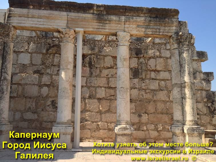 capernaum photo