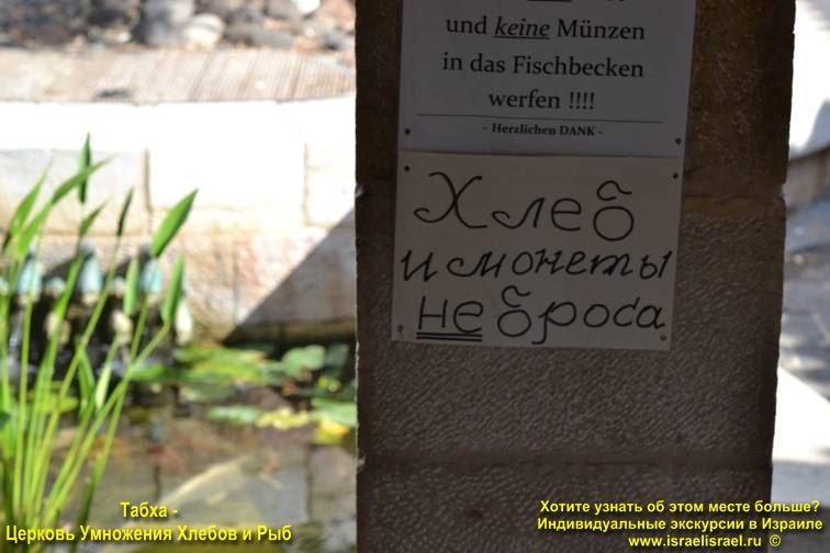 Христианские места Капернаум и Табха