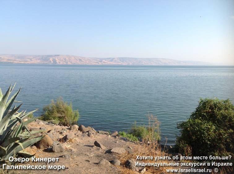 Рыба святого Петра в Галилее