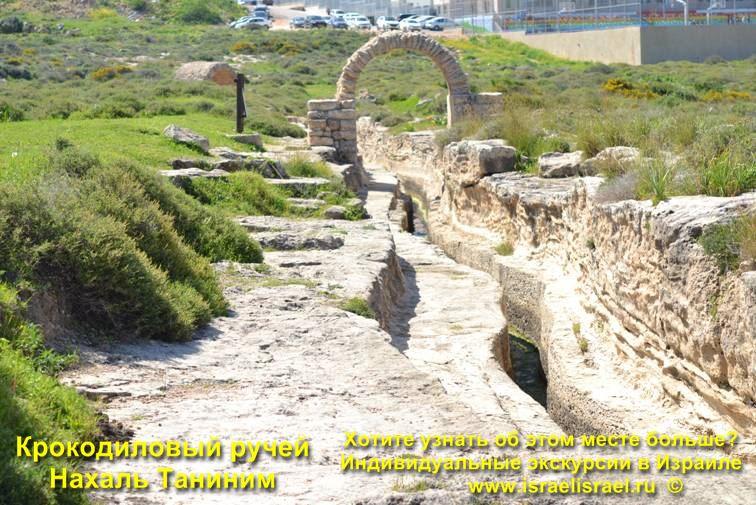 национальный парк таниним в Израиле