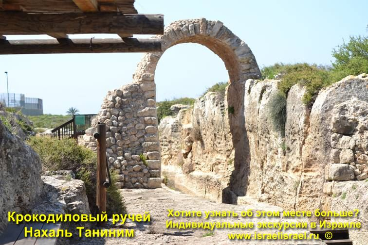 Чистые реки в Израиле