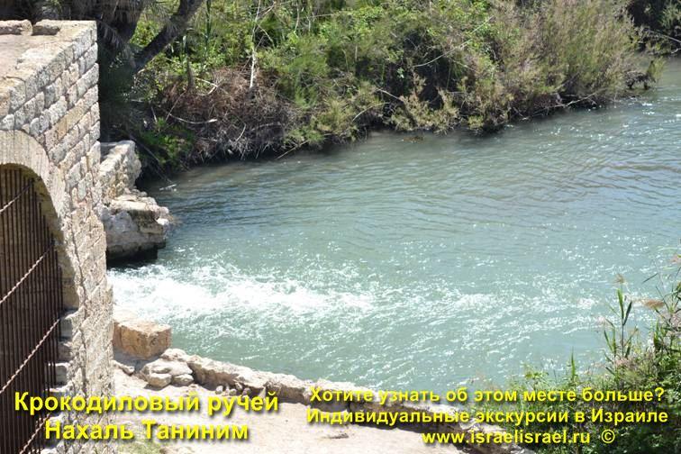 Реки Израиля