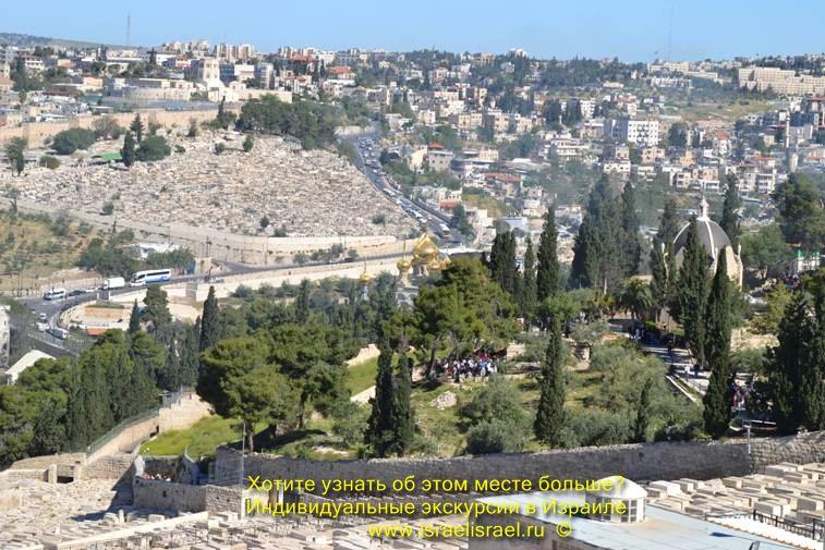 какие самые интересные экскурсии в израиле отзывы