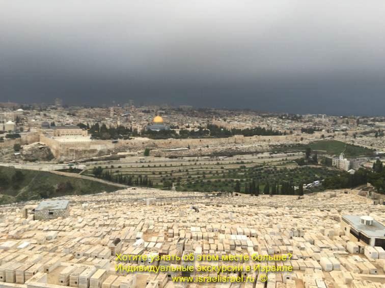 Все об эйлате израиль