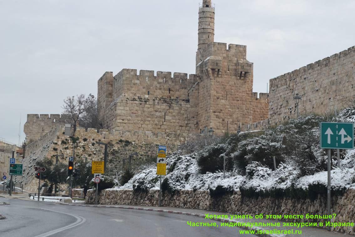 Israel winter reviews