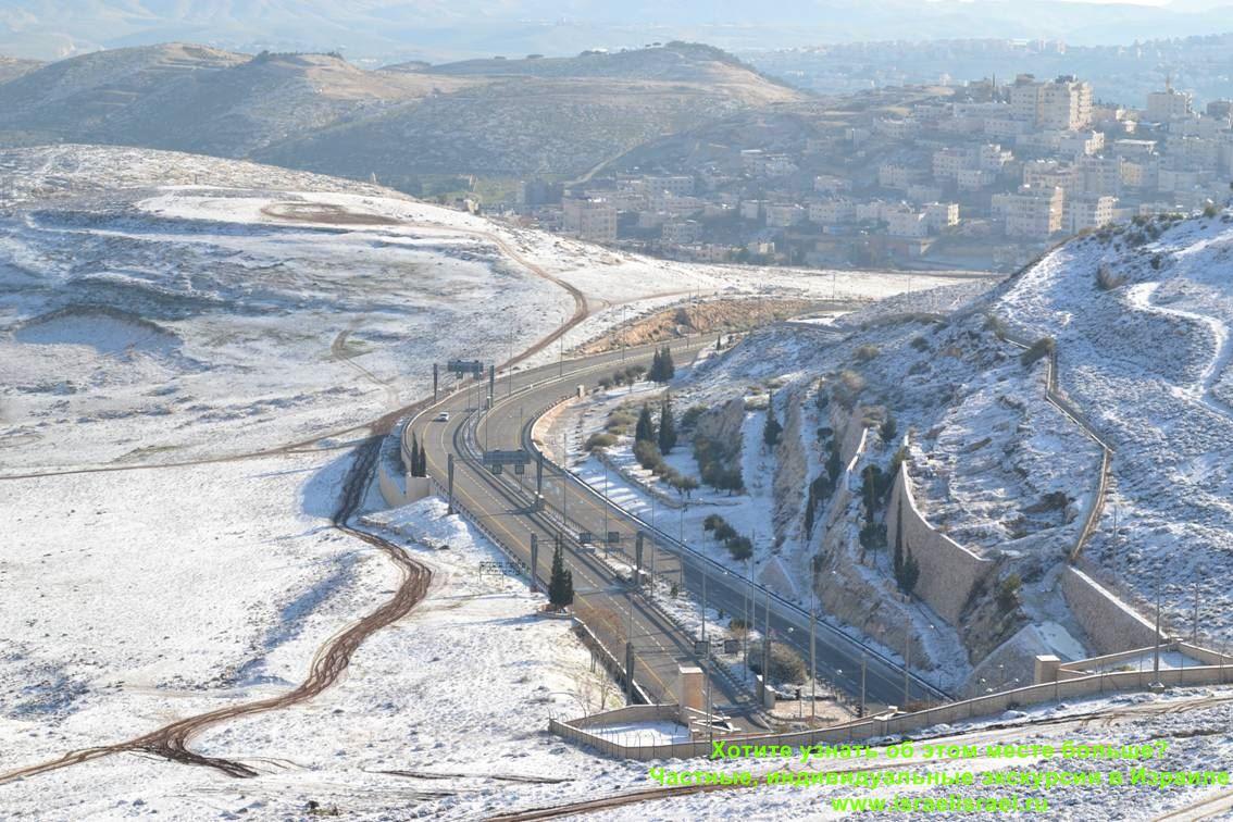 пасут ли овец зимой в израиле