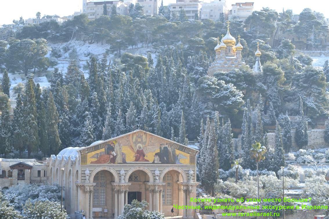 в израиле бывает зима