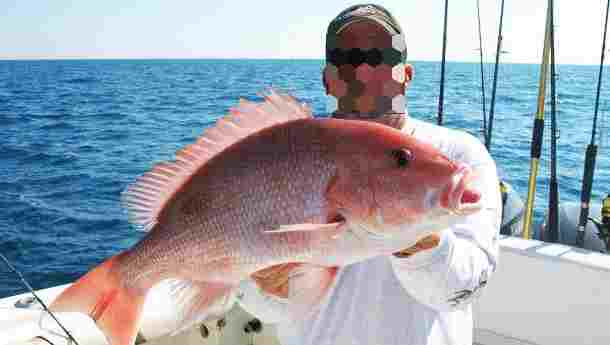 персональный гид в Израиле Предлагаем услуги рыбалки в Израиле, отдых на яхте.