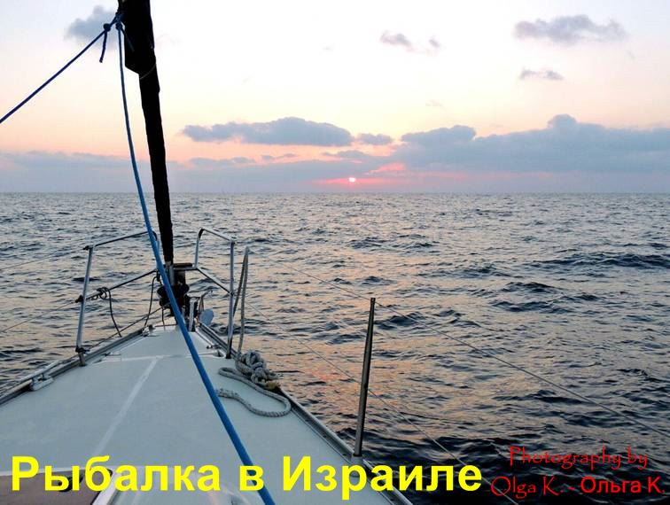 средиземное море спиннинг с берега