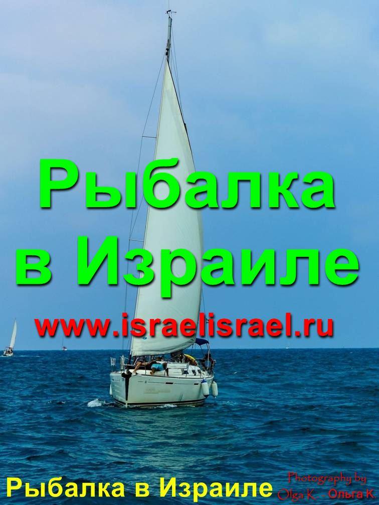 бесплатная рыбалка в Израиле