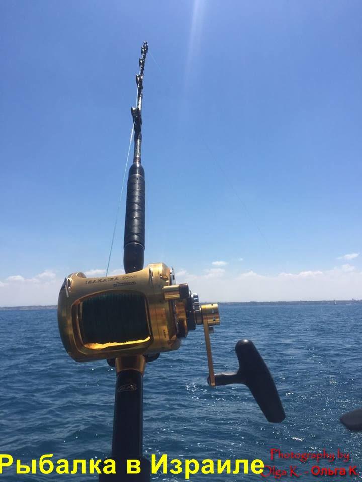 рыбалка в Израиле форум