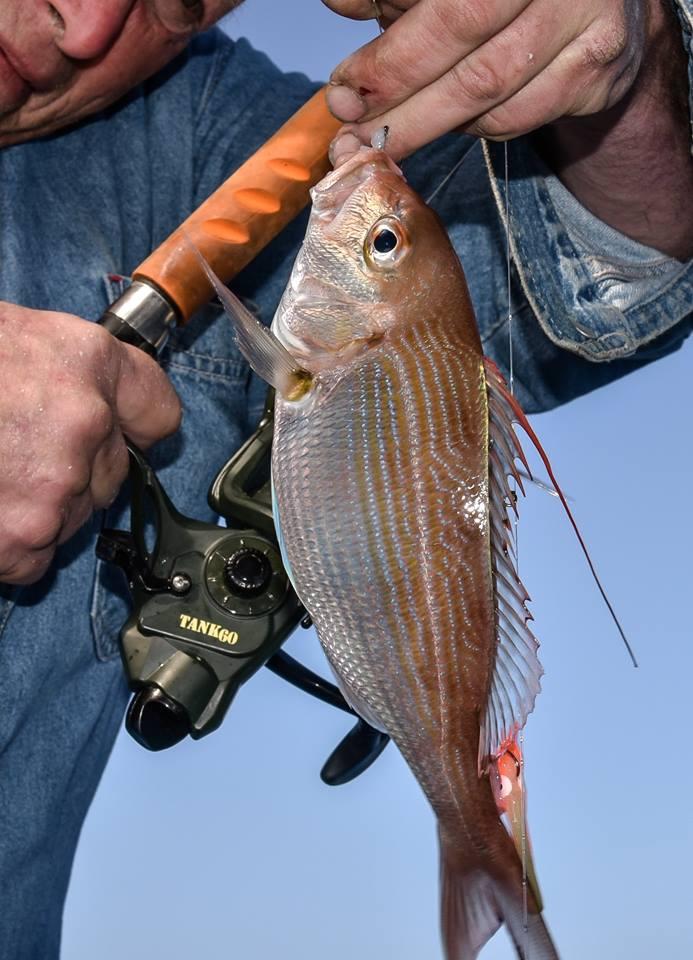 рыбалка в Израиле на Кинерете