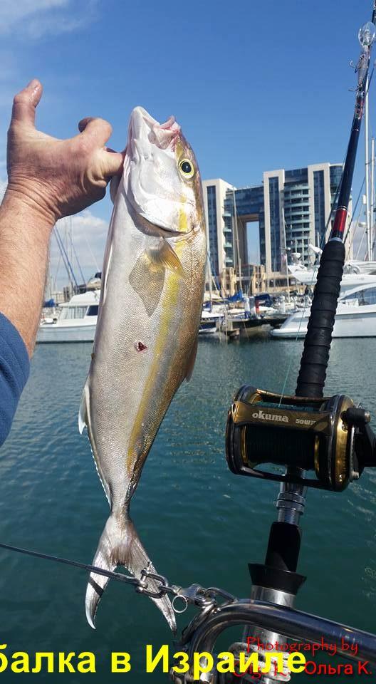 рыбалка в Израиле цены
