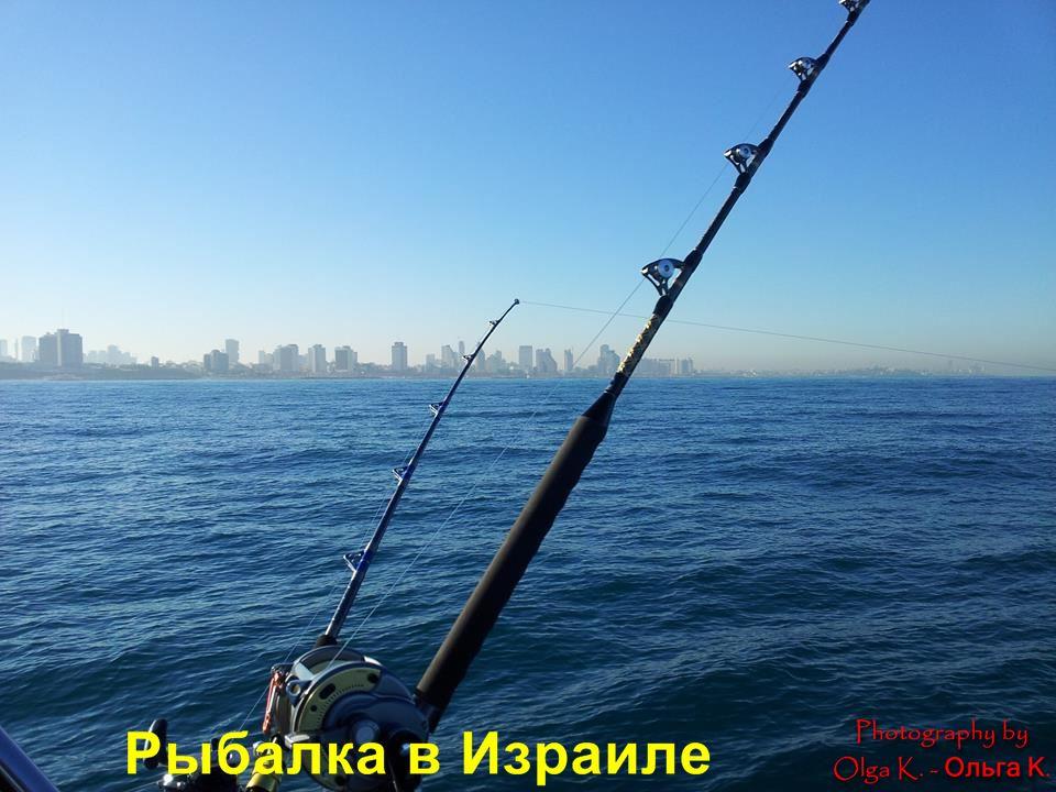 платная рыбалка в центре Израиля